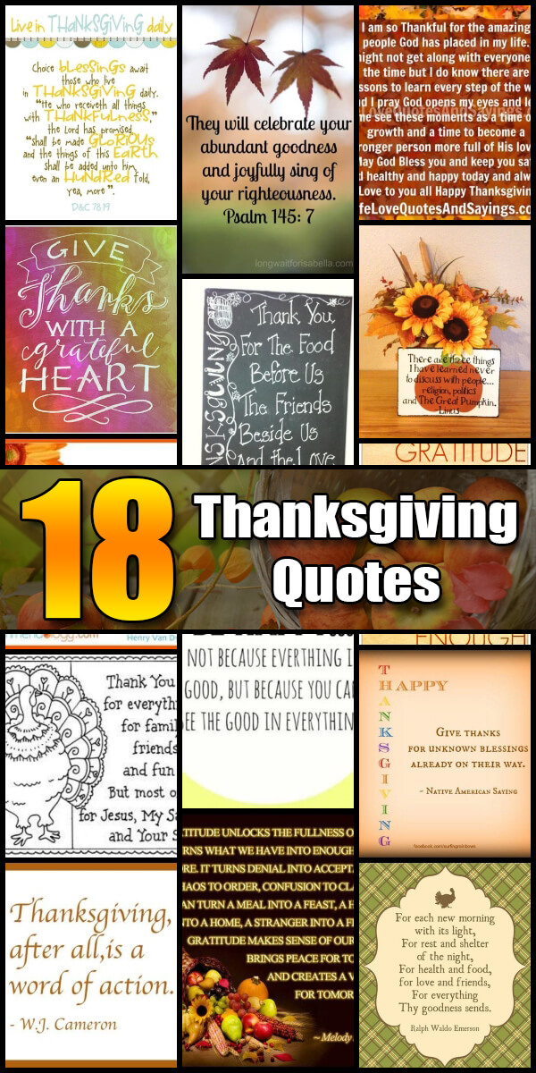 18 Appreciative Thanksgiving Quotes - Holiday Vault #Thanksgiving